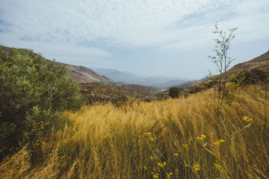 Критские холмы в сентябре