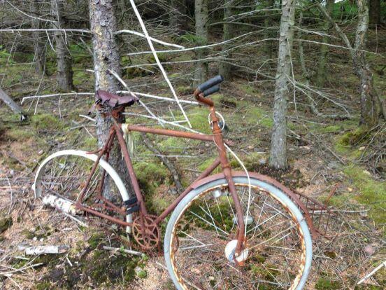 к велопробегу по Норвегии готов