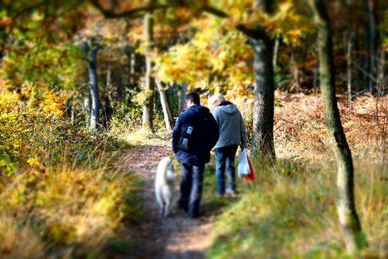 "Прогулка в лесу ""Oer-Erkenschwick"""