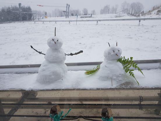 sevenpics presents - Снеговики, вот такие наши снеговики, а какие у вас ?