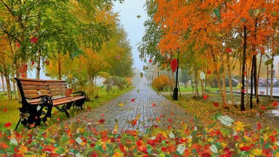 sevenpics presents - Осень — это сны листопада...