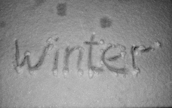 sevenpics presents - Hello, winter! ❄️