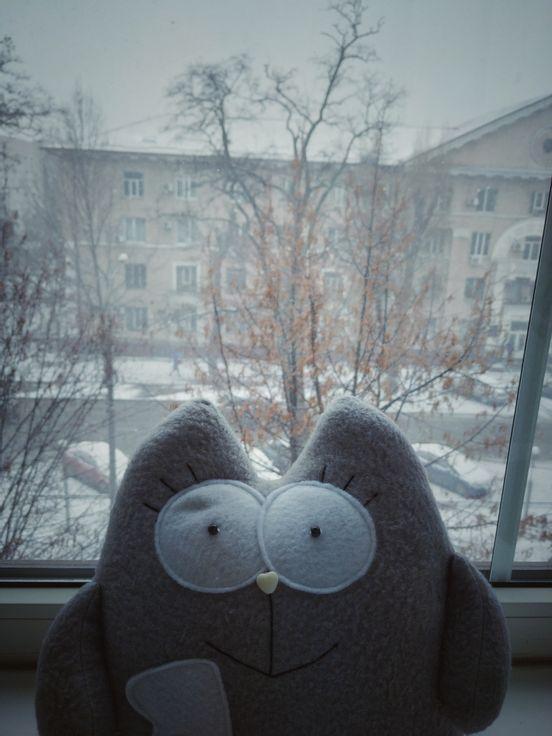 sevenpics presents - Котейка рада снегу 😊. А ты? =)