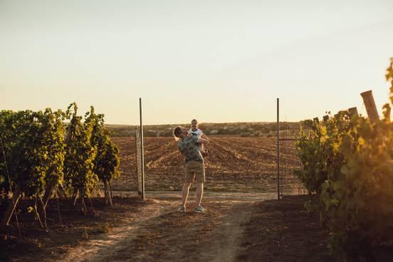 sevenpics presents - Прогулка в виноградниках