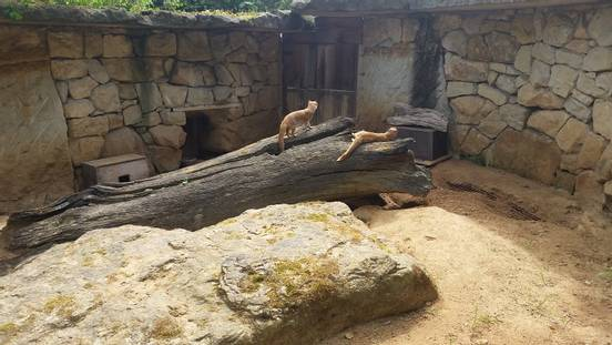 sevenpics presents - Зоопарк в Праге