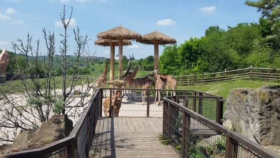 sevenpics presents - В пражском зоопарке