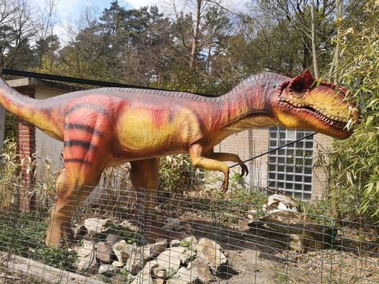 sevenpics presents - Заопарк Dinopark Metelen