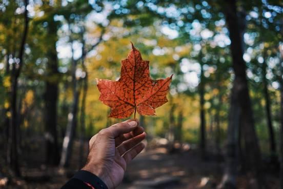 sevenpics presents - Canada