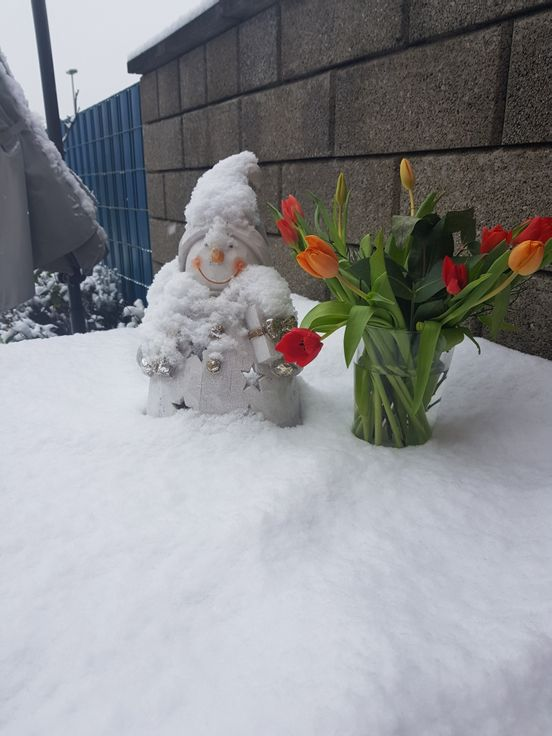 sevenpics presents - Зимне-весенняя картина