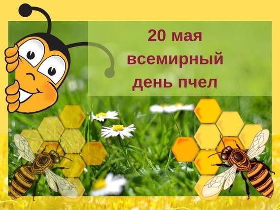 sevenpics presents - Сегодня всемирный день пчёл — международный праздник, отмечаемый 20 мая