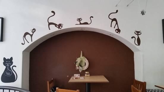 sevenpics presents - Кошачье кафе