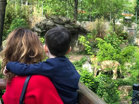 sevenpics presents - Frankfurter Zoo
