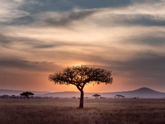 sevenpics presents - South Africa