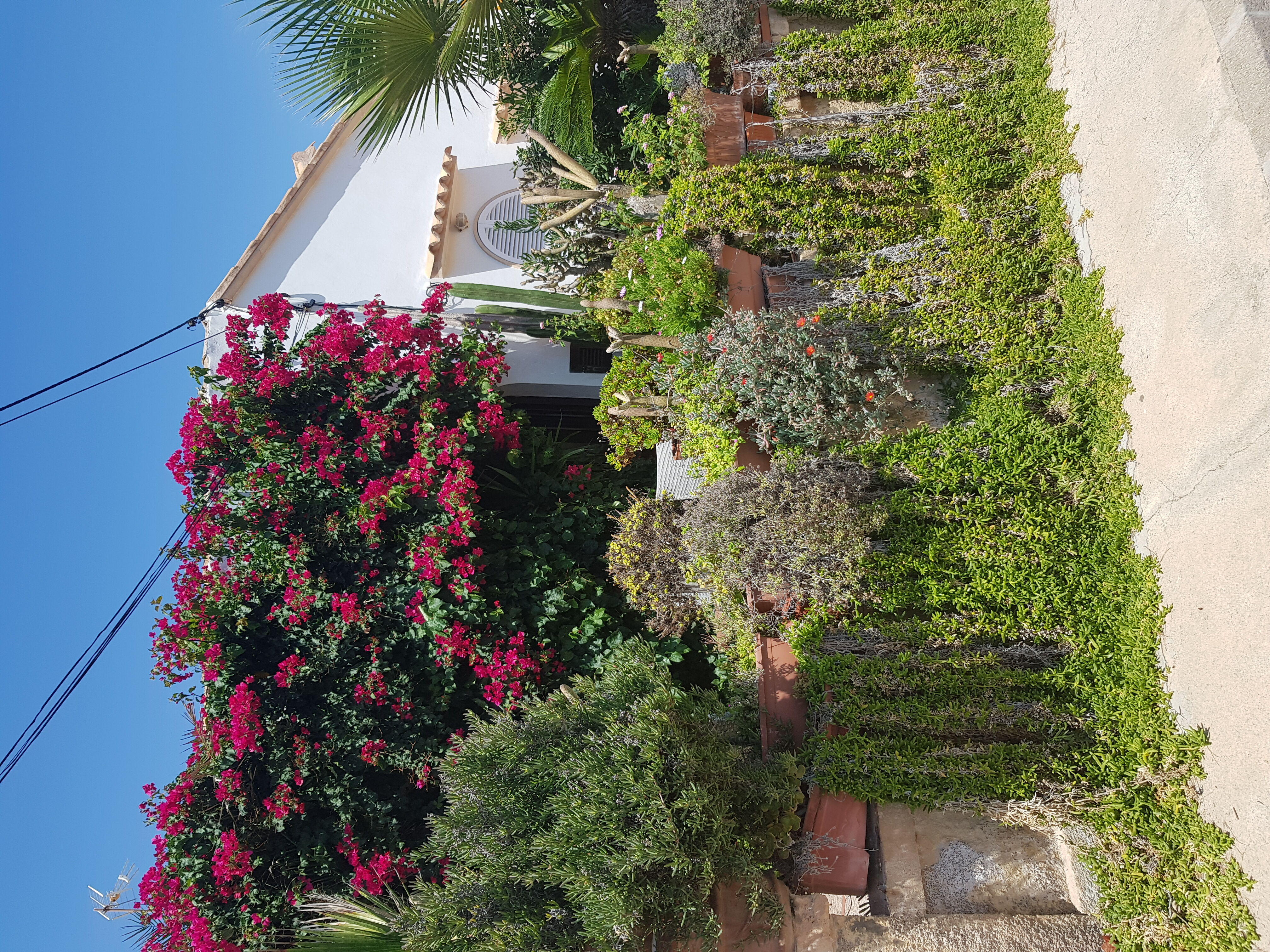 Mallorca Porto Colom Fischerdorf
