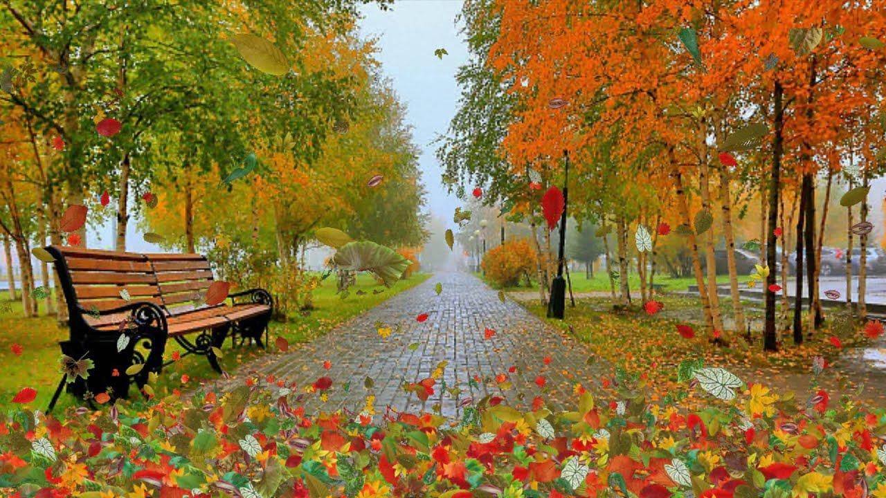 Осень — это сны листопада...