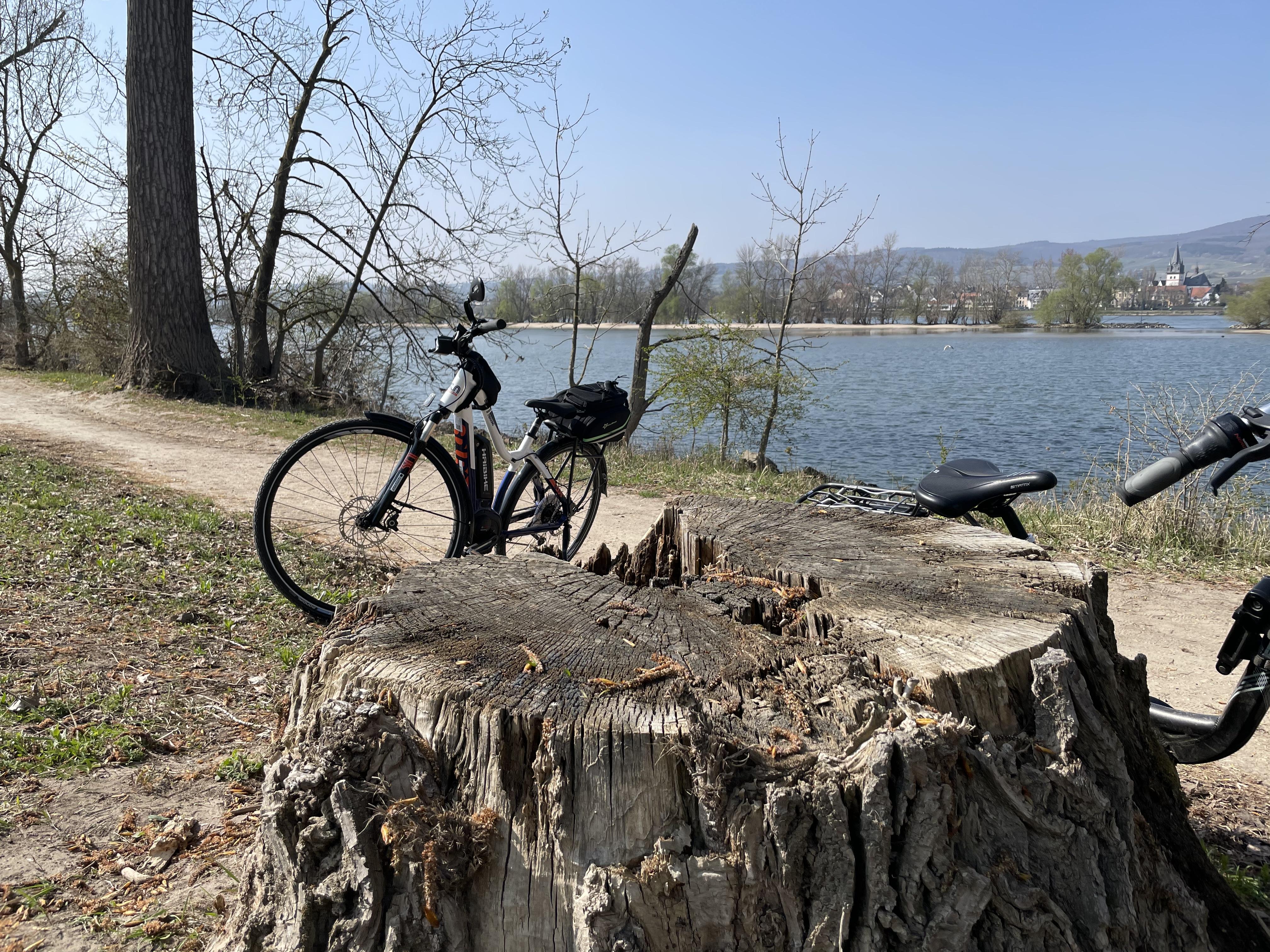 Весенние велотуры