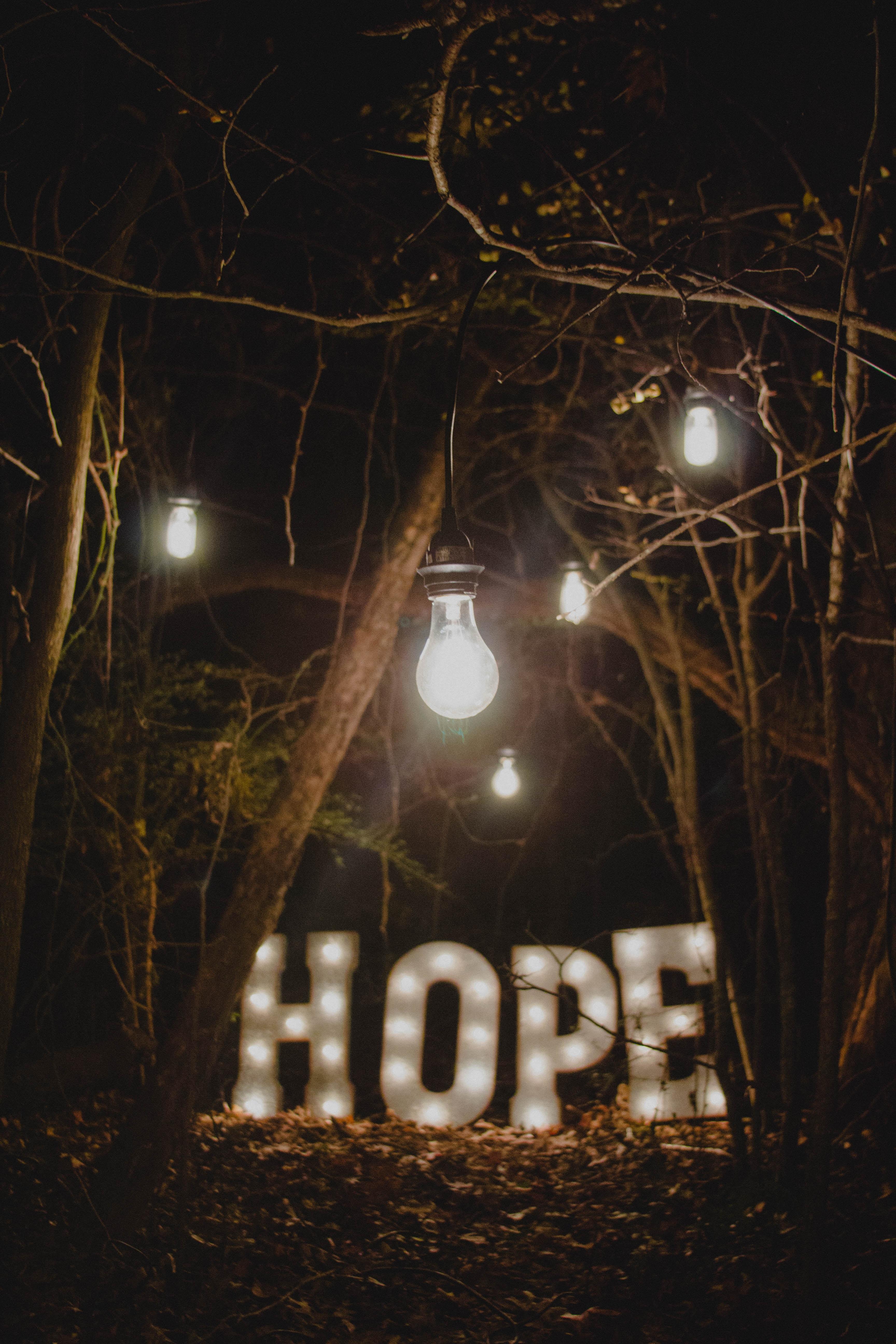 Надежды