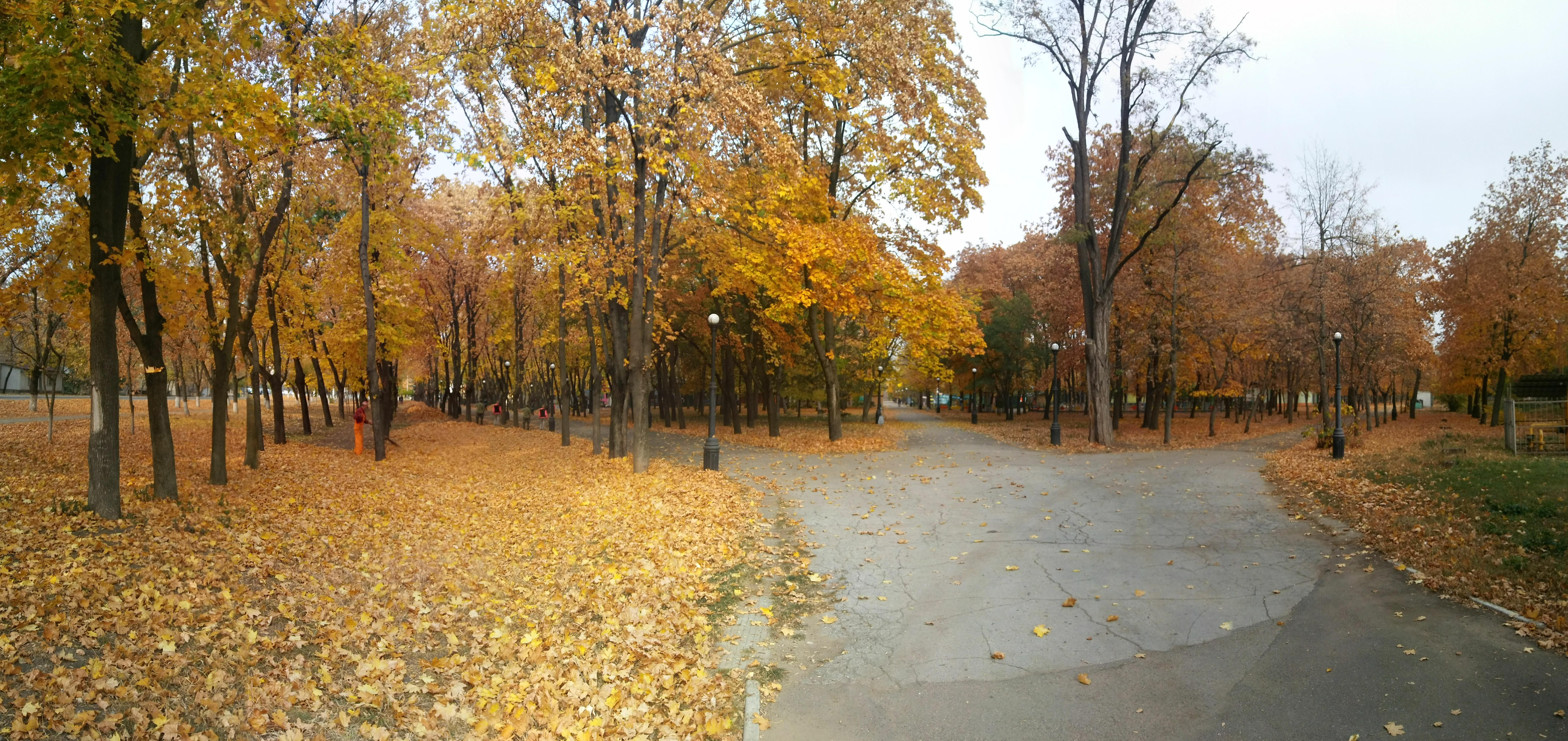 Осень в ПМР