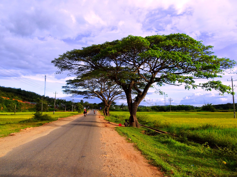 Road frame of my hometown