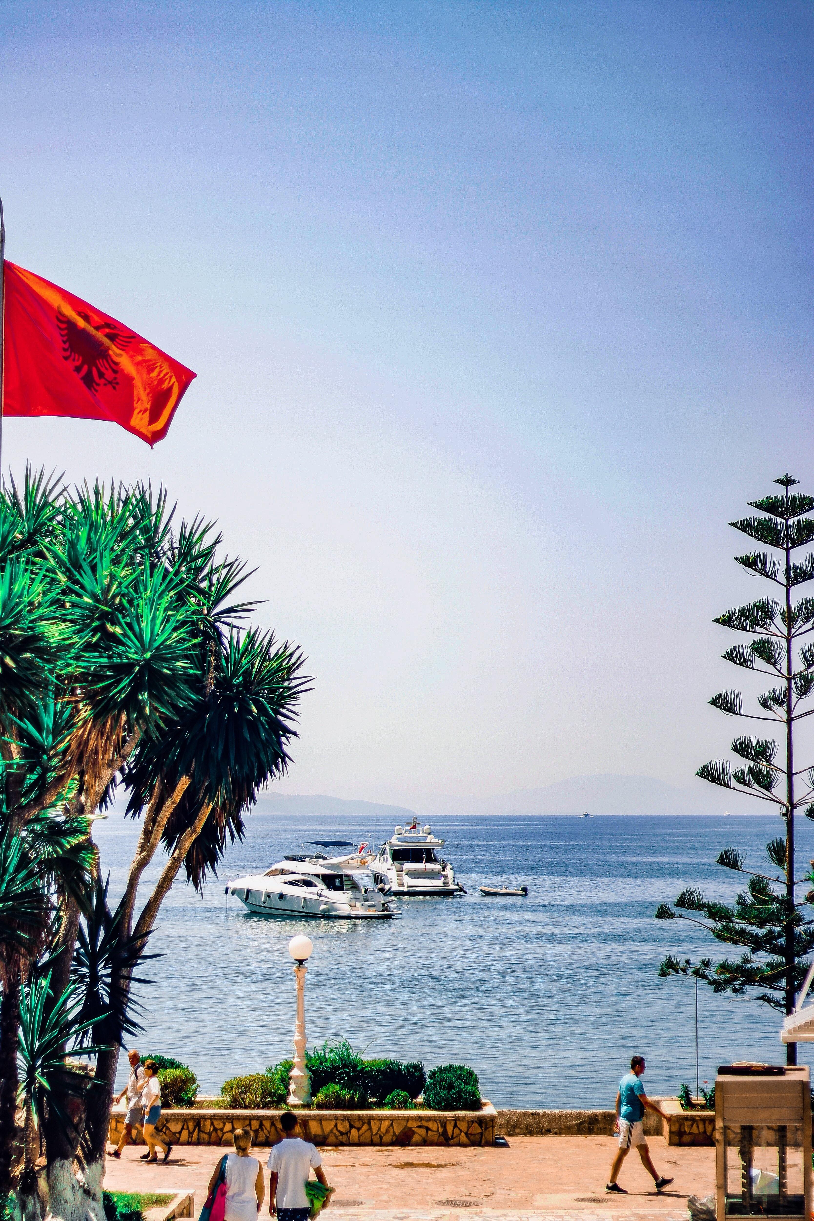 Eurovision Song Contest Albanien 2021