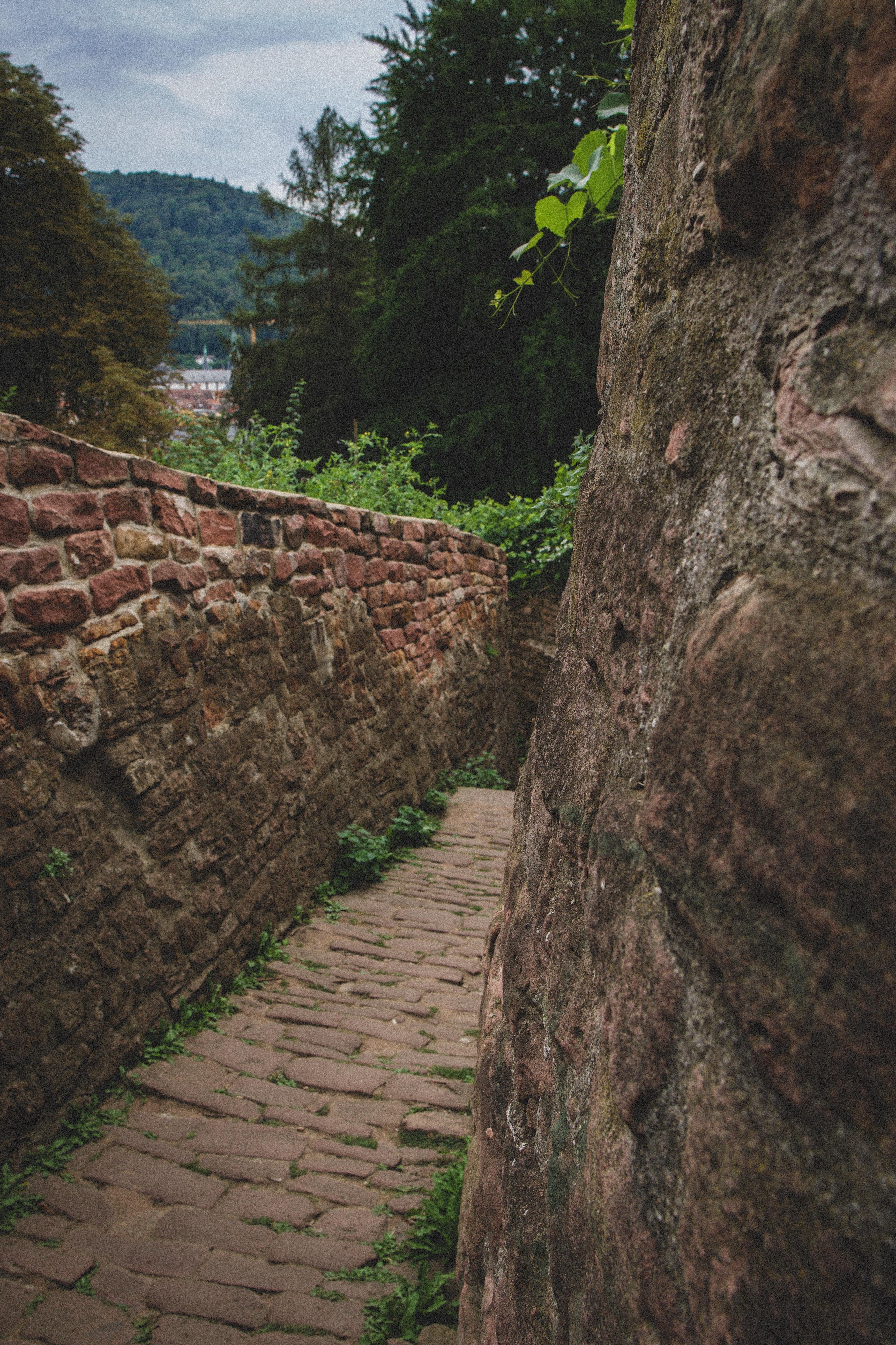 Основні моменти відвідування Гейдельберга: Пройдіться шляхом великих розумів