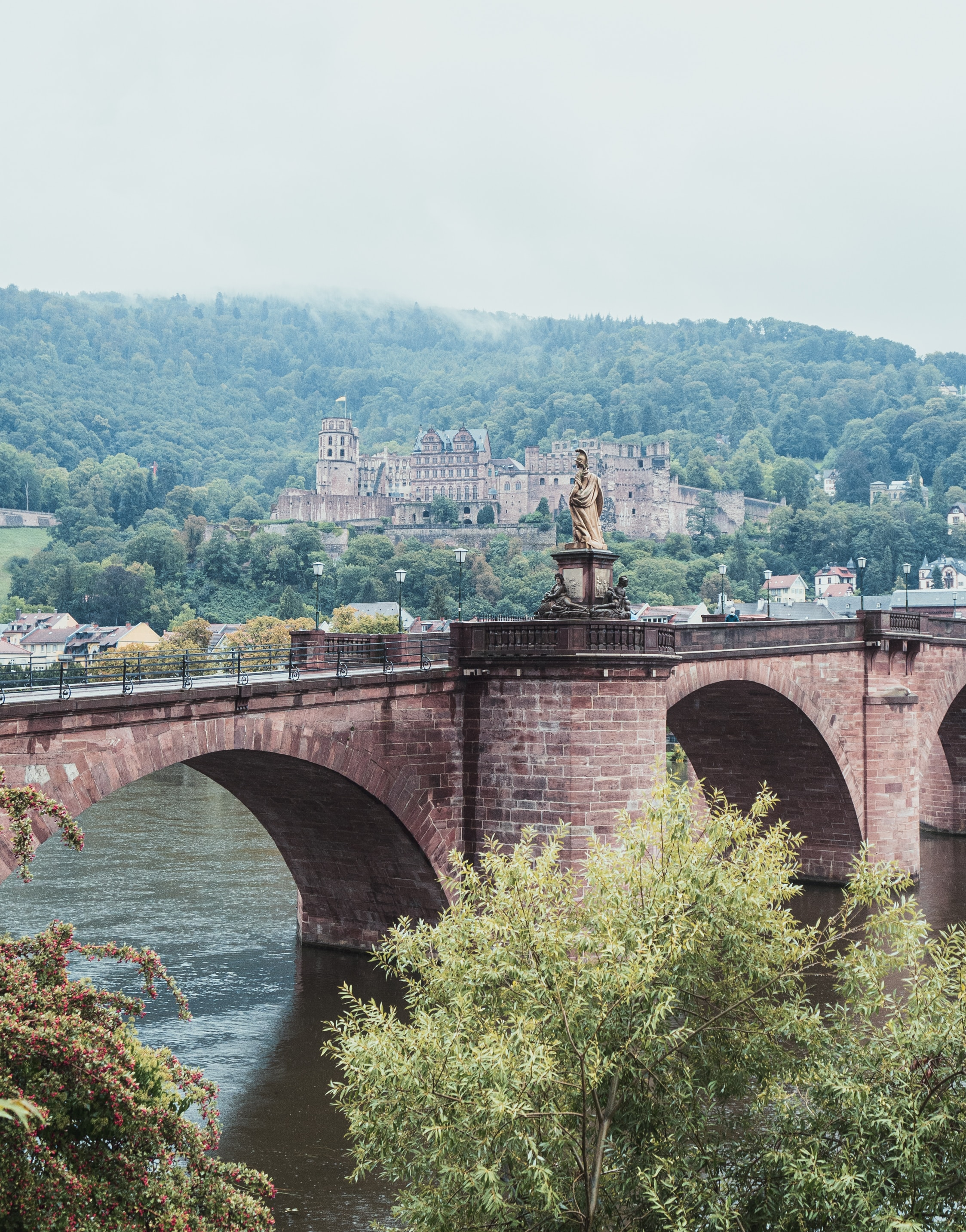 The allure of the small University town of Heidelberg