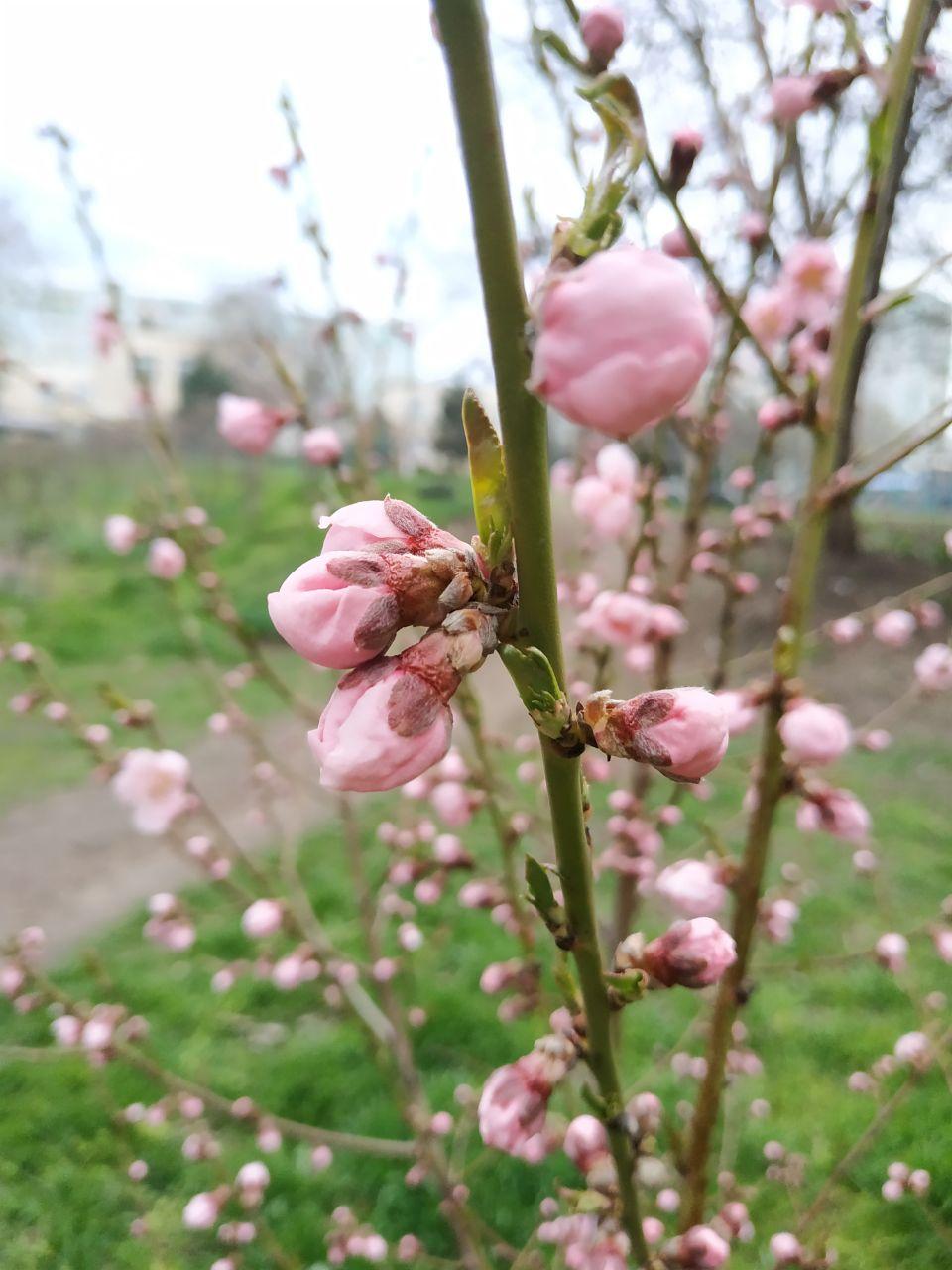 Весна наконец-то 🌞😊