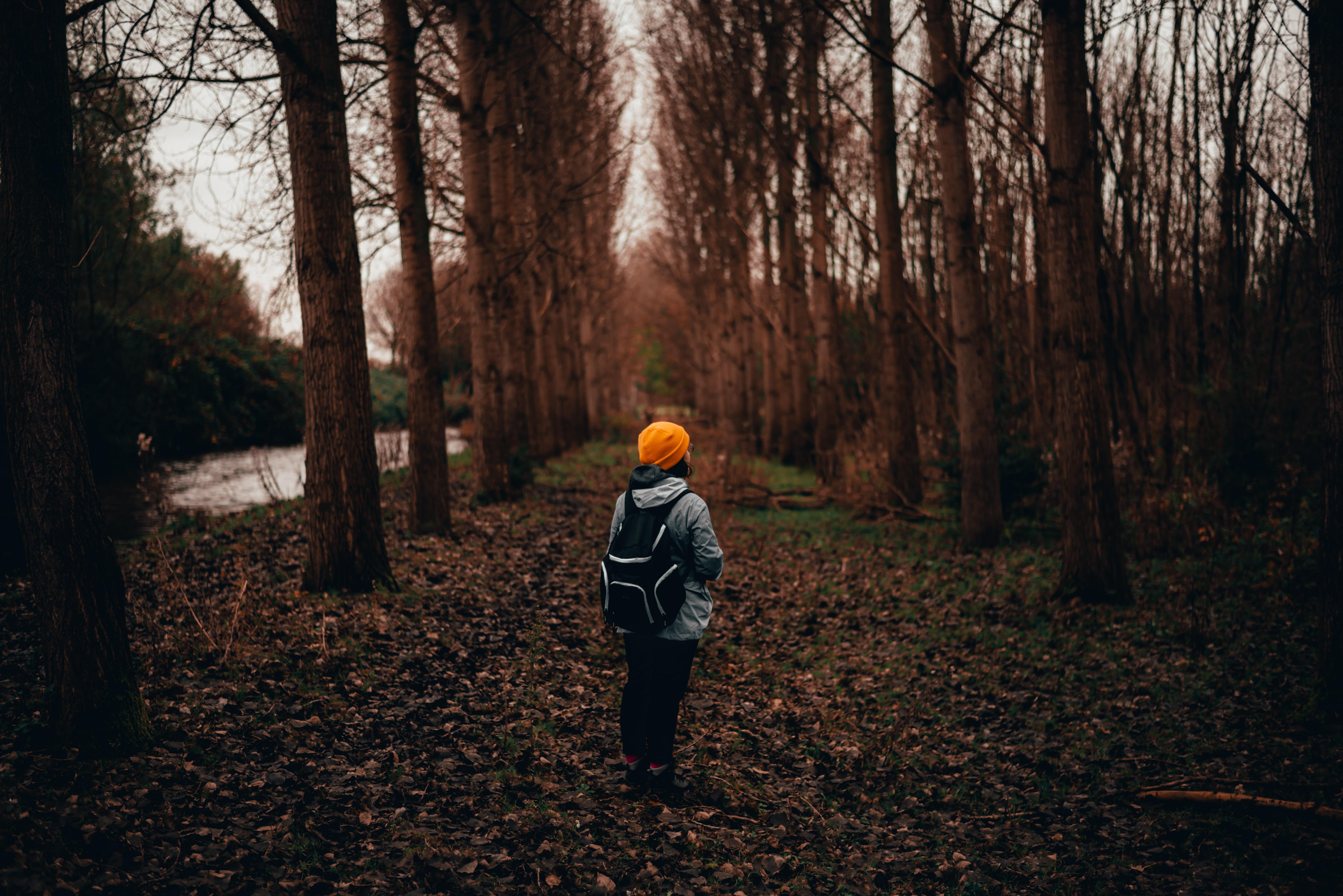 День осенней прогулки